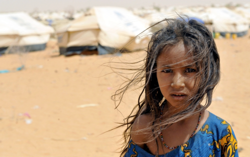 UNICEF - Niger Chiefs